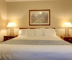 Alpine Inn Hotel In Rockford Il Rockford Hotels That Are